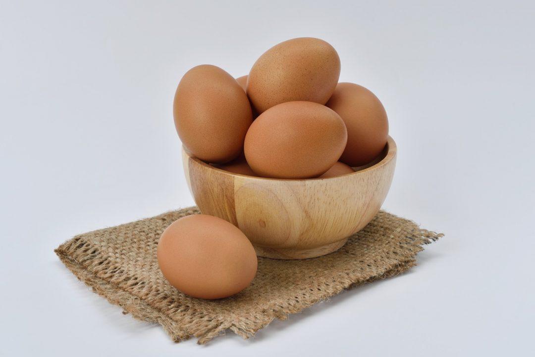 egg-1618854_1280