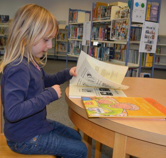 menumbuhkan minat baca anak2