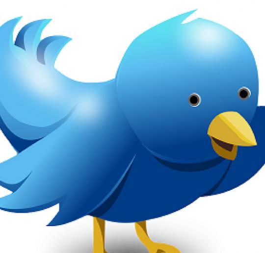 3 Cara Optimasi Profil Twitter Sebagai Media Sosial Pendukung Aktivitas Ngeblog
