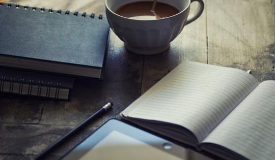 Bagaimana Menjadi Blogger Profesional Versi Emak-Emak Blogger
