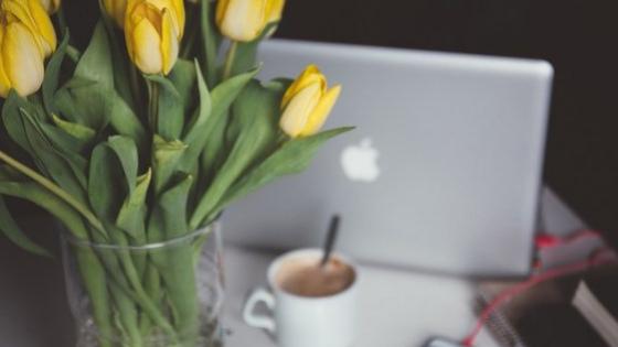 Membangun Parenting Blog