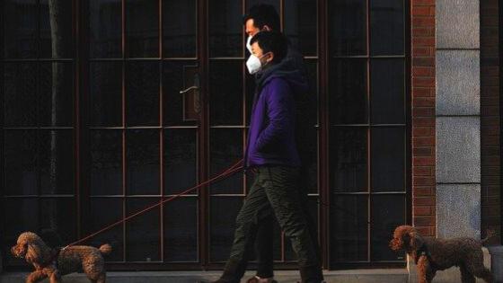 7 Tip Menghadapi New Normal Pandemi Covid-19