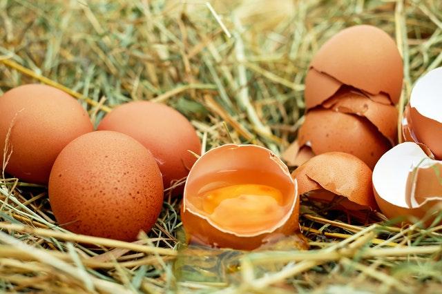 telur mentah - makanan berbahaya untuk ibu hamil3